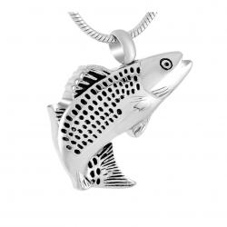 L'Âme Du Pêcheur